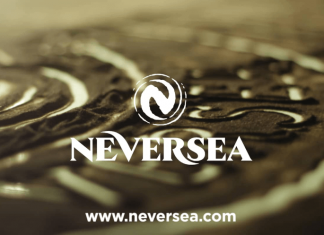 Festivalul Neversea