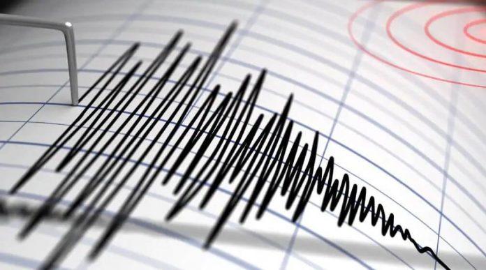 Notificari cutremur INFP Twitter si Telegram