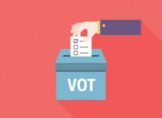 Delegat Vot, Observator Vot, Alegeri Romania